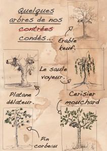 les_arbres_de_nos_condes