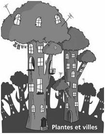 plantes et villes